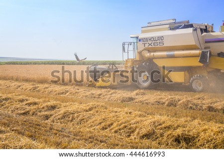 Polski Trambesh - June 23: harvester reaps the harvest of wheat, storks and was attended on June 23, 2016, Polski Trambesh, Bulgaria