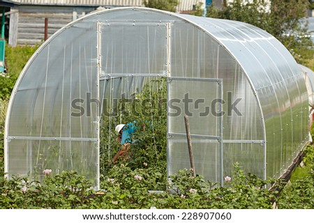 Polycarbonate greenhouse on a country site - stock photo
