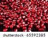 pomegranate fruit on black - stock photo