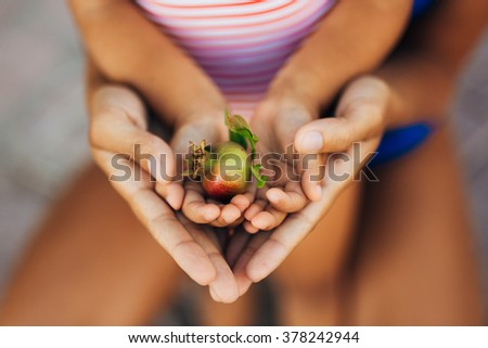 pomegranate in the hands of a child