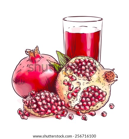 Pomegranate. Raster version. Watercolor imitation. - stock photo