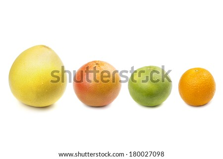 Pomelo, grapefruit, sweetie, orange. Isolated on white