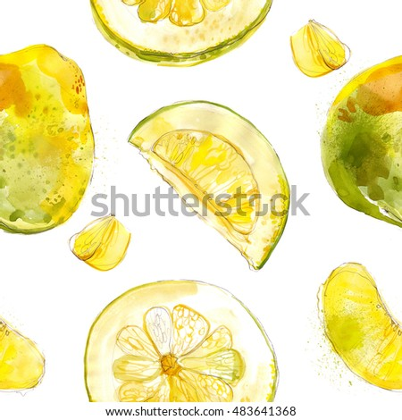 Pomelo. Pattern of the watercolors of fruit on a white background.