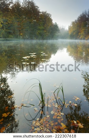 Pomerania, Poland/ Misty Lake. - stock photo