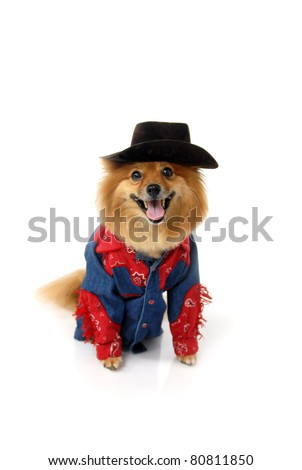 Dog In Cowboy Costume Stock Images, Royalty-Free Images & Vectors ...
