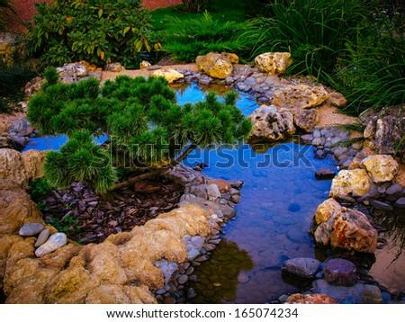 pond - stock photo