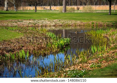 pond in a park - stock photo