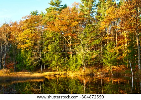 Pond in White Mountain National Forest, New Hampshire, USA. - stock photo