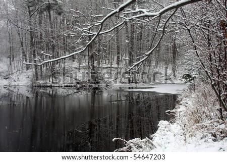 Pond In Winter - stock photo