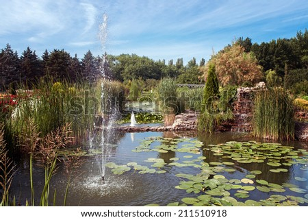 pond with a fountain in the summer botanical garden