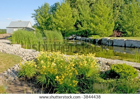 Pond with Barn in the background - stock photo