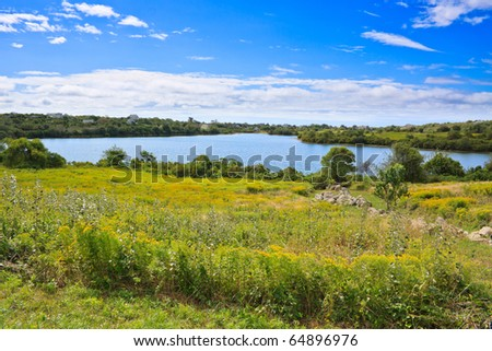 pond with houses scattered around behind a field of yellow goldenrod