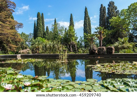 Pond with water lilies in Nikitsky Botanical Garden, Crimea, Russia. - stock photo