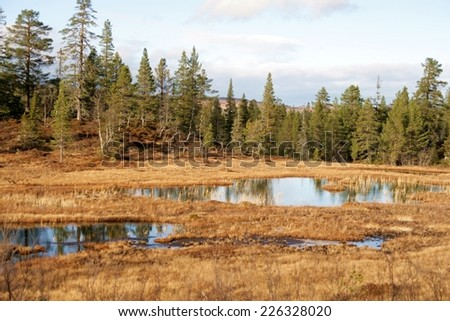 Ponds in a mountain area in late fall - stock photo
