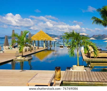 Pool Palms In Paradise - stock photo