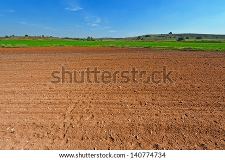 Poor Stony Soil after the Harvest in Israel - stock photo