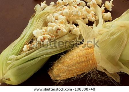 Pop corn and sweet corn - stock photo