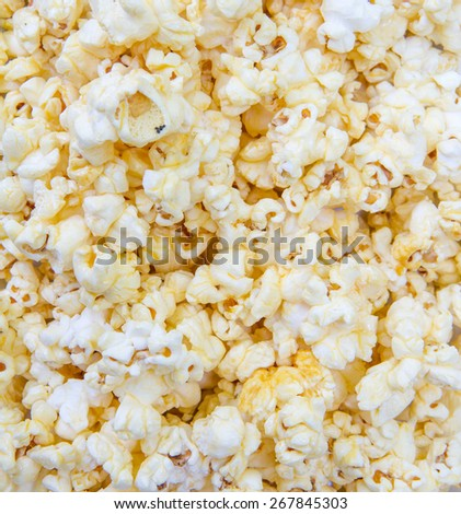 popcorn grains on the white background