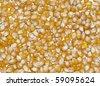 Popcorn kernal background isolated on white - stock photo