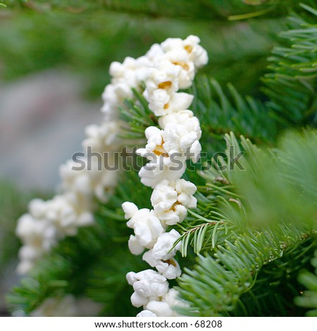 Popcorn on Tree - stock photo
