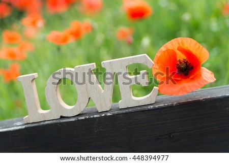 Poppies and wooden letters with the word love in nature