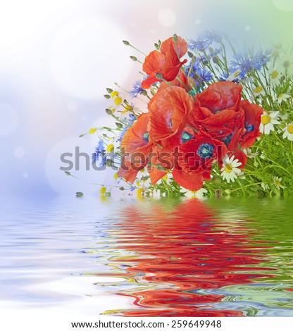 poppies, daisies ,cornflowers in bouquet - stock photo