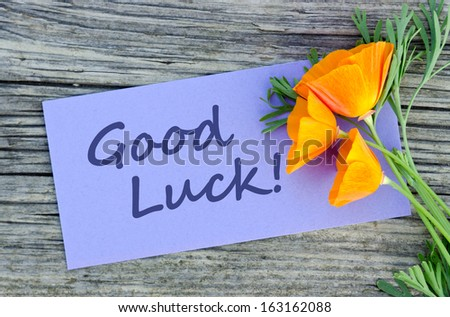Poppy and violet card with lettering good luck
