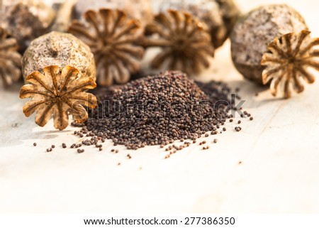poppy seeds heap and dry flowers on the table - stock photo