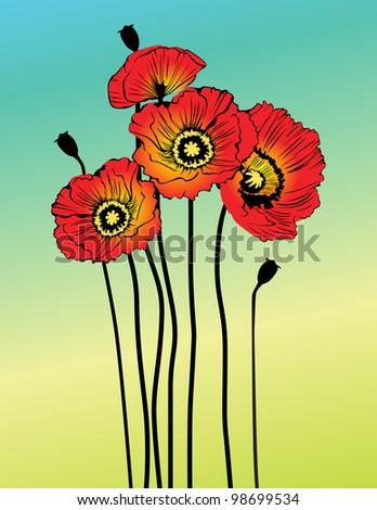poppy spring flowers - stock photo