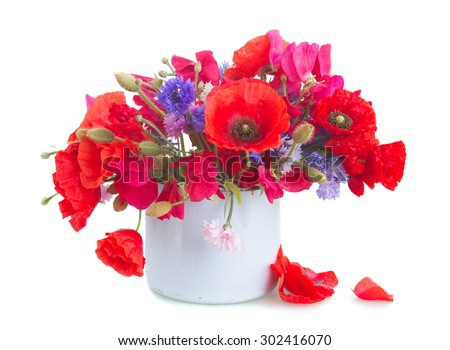 Poppy, sweet pea and blue corn flowers in pot   isolated on white background - stock photo