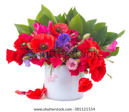 Poppy, sweet pea and corn flowers with green leaves  in blue  pot   isolated on white background - stock photo