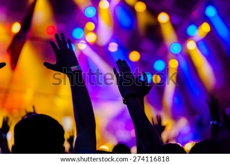 Popular Music Concert, Rock and Roll, Audience.
