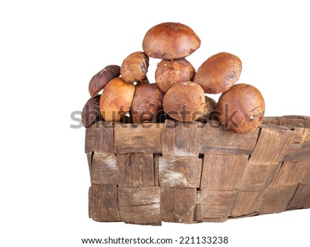 porcini mushrooms lying in a wicker basket isolated on white background. Shallow depth of field - stock photo