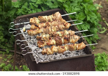 Pork Shish kebab on Fire. Appetizing fresh meat shish kebab prepared on a grill wood coal, outdor  - stock photo