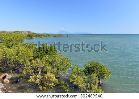 Port Douglas, the Great Barrier Reef,, Queensland, Australia -5 - stock photo