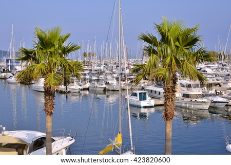 Port of Cavalaire-sur-Mer with two palm trees in the foreground, commune in the Var department in the Provence-Alpes-Cote of Azur region in southeastern France. - stock photo