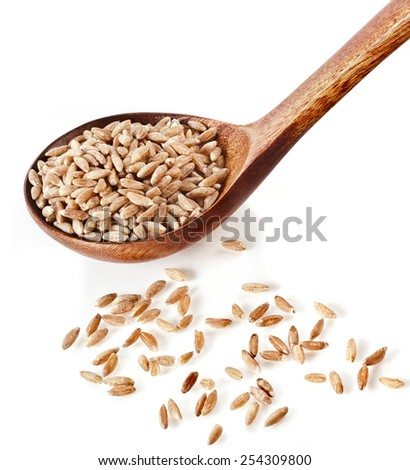 Portion of grains spelt , popular health food, in spoon isolated on white background - stock photo