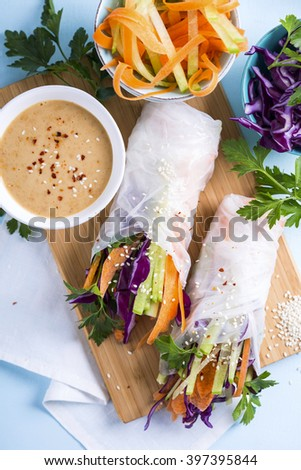 Portion of vegetarian spring rolls shot from above - stock photo