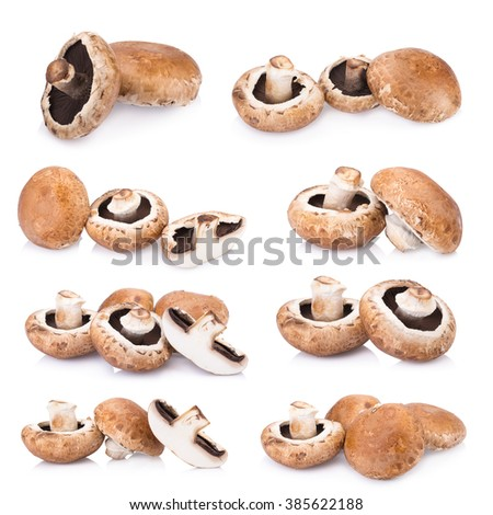 portobello mushrooms isolated on white background. - stock photo