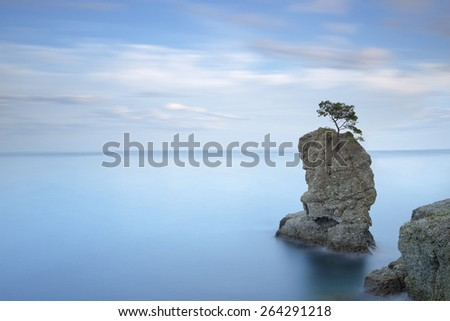 Portofino natural regional park. Lonely pine tree rock and coastal cliff beach. Long exposure photography. Liguria, Italy - stock photo