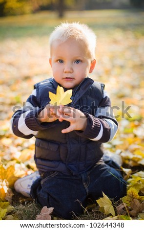 Portrait od a cute young boy outdoors in nature at fall. - stock photo