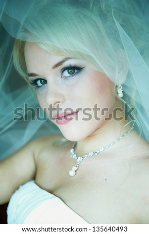 Portrait of a beautiful bride on background