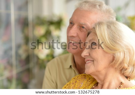 Portrait of a beautiful caucasian elderly couple relaxing at home - stock photo