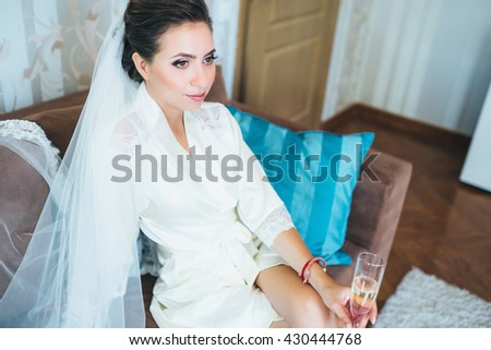 portrait of a beautiful elegant  bride. Morning of the bride.