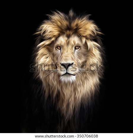 Portrait of a Beautiful lion, lion in the dark, oil paint, soft lines - stock photo
