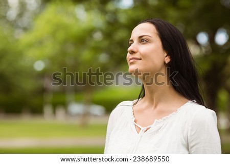 Portrait of a casual brunette smiling in the park - stock photo