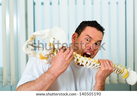 Portrait of a crazy therapist in his practice, he bites in a backbone or spine - stock photo