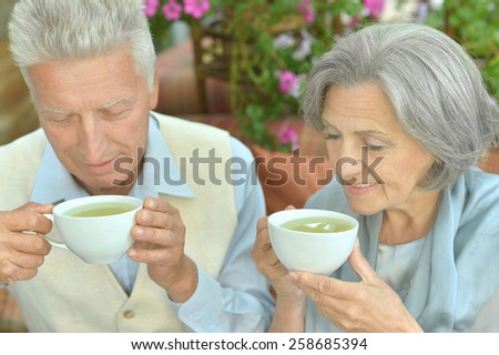Portrait of a cute old couple drinking tea - stock photo
