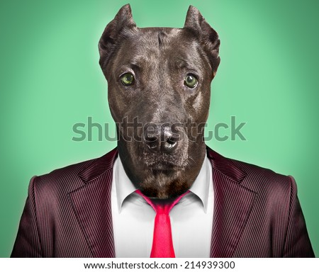 Portrait of a dog in a business suit - stock photo