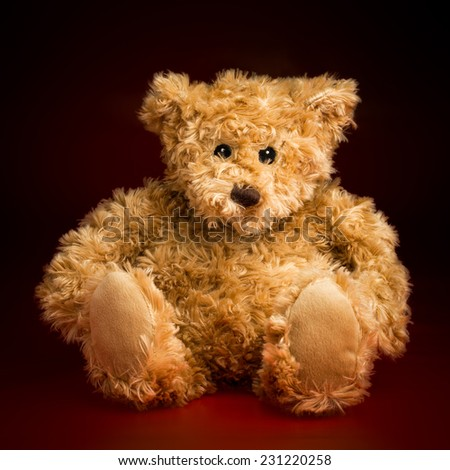Portrait of a fluffy toy teddy bear isolated against a red and black background - stock photo